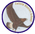 Enfield District School logo